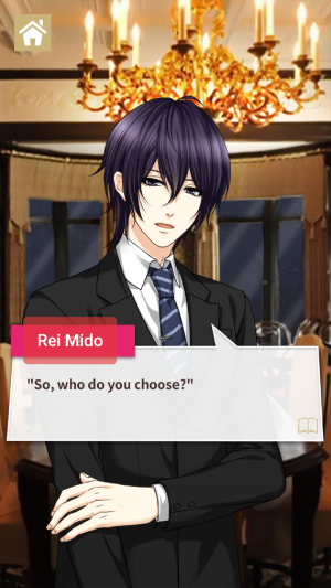 Rei Mido, 'Wanted: Son-in-law!' ©OKKO